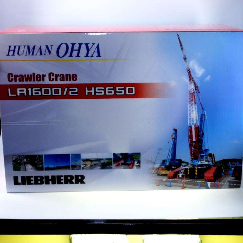 Liebherr LR 1600-2 + Derrick  Human Ohya